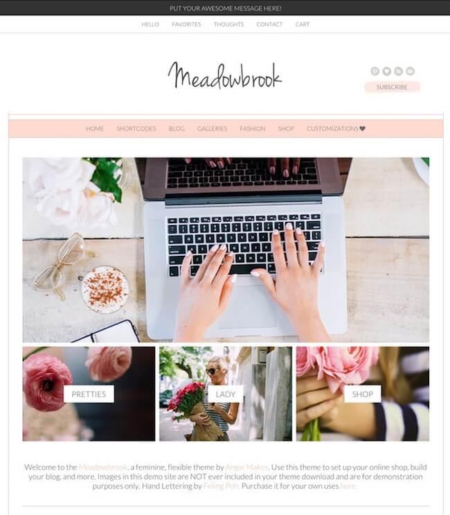 The Meadowbrook Boutique WordPress Theme