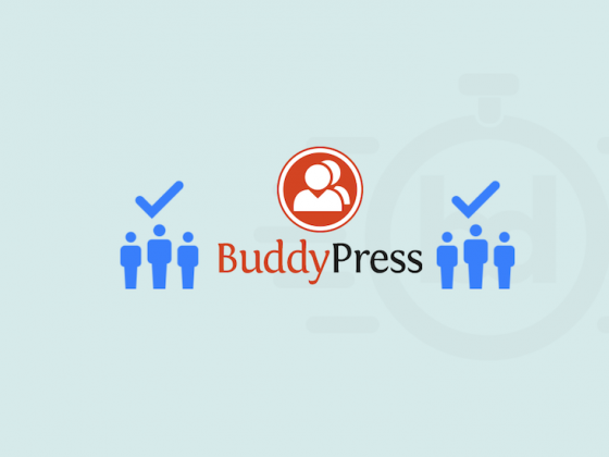 Best BuddyPress Themes