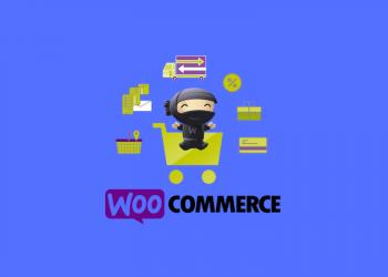 Best WooCommerce Plugin