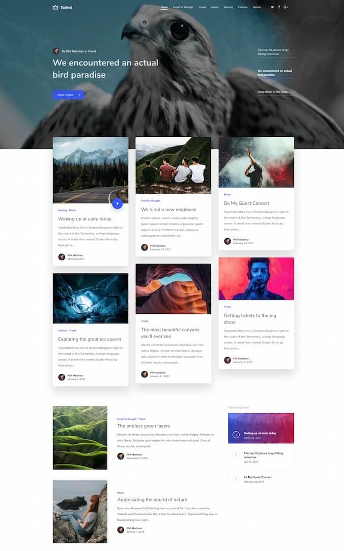 Salient Blogging Theme