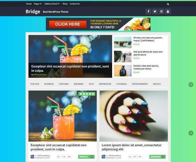 bridge-wordpress-theme