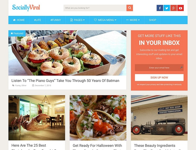 Viral Content Sites, Wp theme