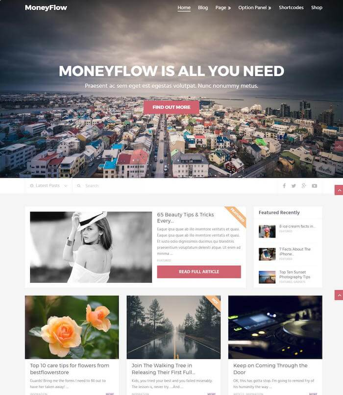 MoneyFlow-theme