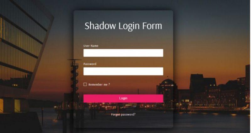 Shadow Login Form