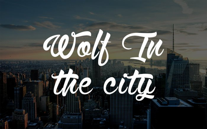 Wolf-in-the-City
