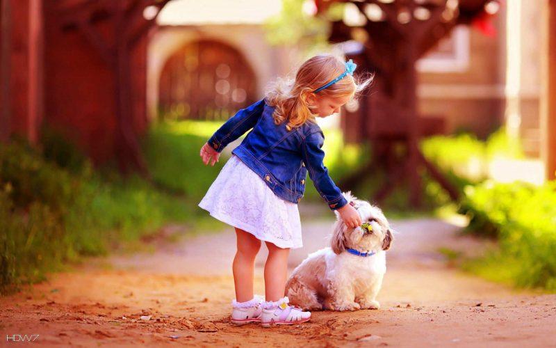 Charming Puppy Wallpaper