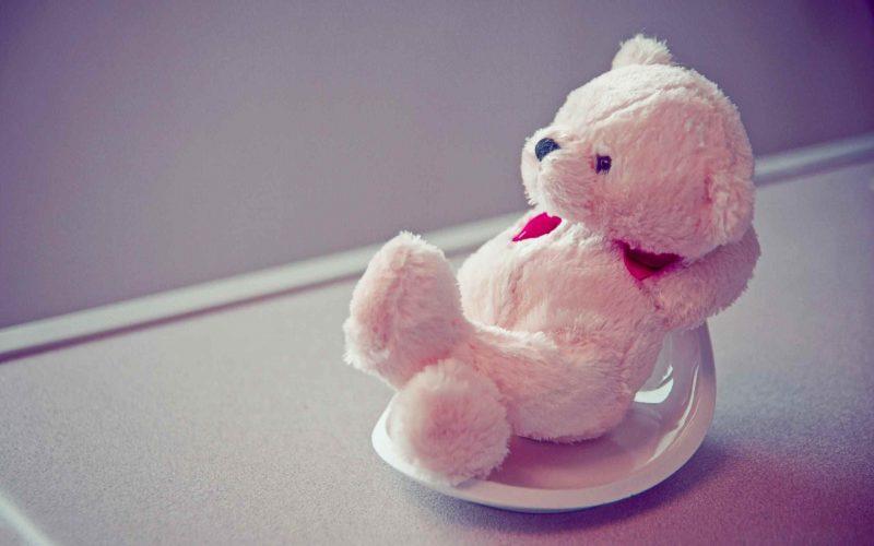 Pink Teddy Wallapper