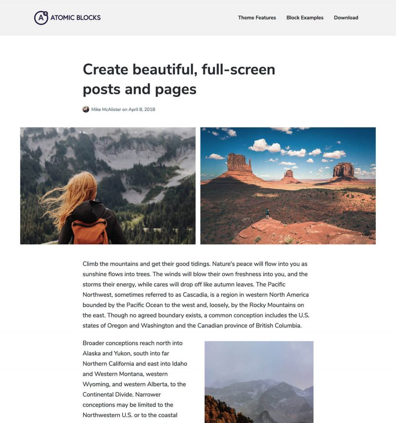 Atomic Blocks WordPress Theme