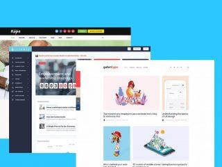 Best Micro Niche WordPress Themes