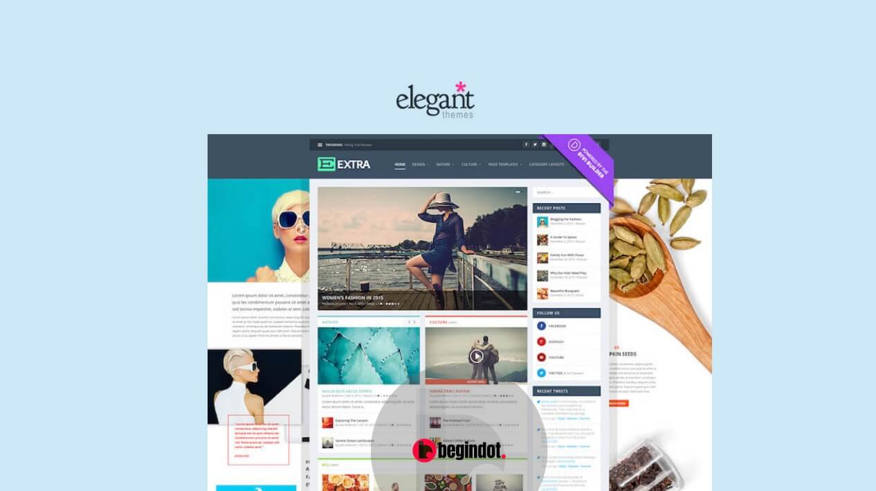Extra Elegant Themes Posts Pages