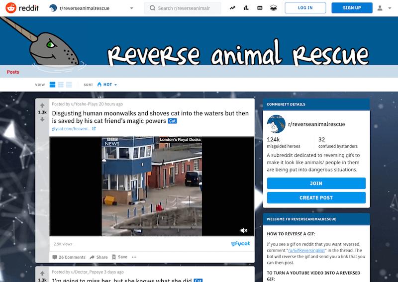 Reverse Animal Rescue