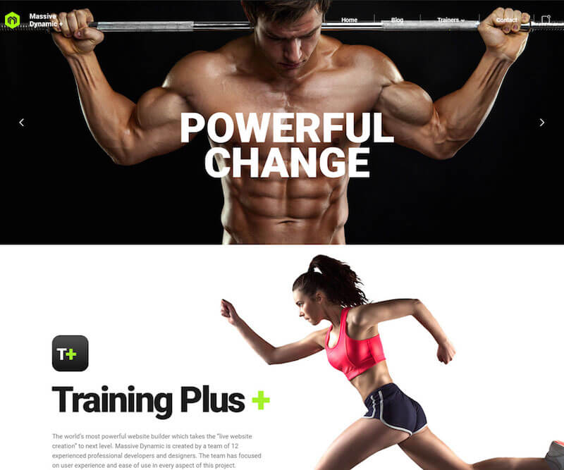 Massive Dynamic Fitness Theme