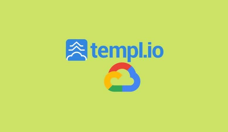 Templ Hosting Review